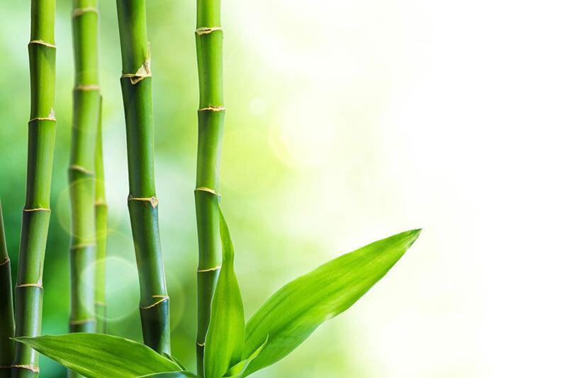 Bambu Kumaş